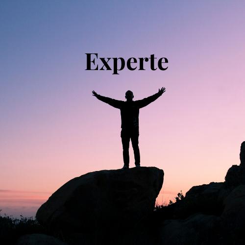 Wie wäre es, wenn deine Profile gepflegt sind und du als Experte bekannt bist?